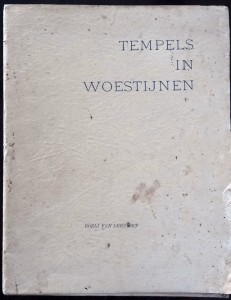 voorblad - Tempels in woestijnen