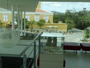S.A.L. Mongui Maduro Bibliotheek -foto Aart G. Broek.red
