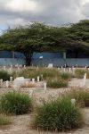 Dodelijke selectie op Curaçao in WO II